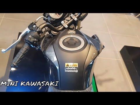 New Kawasaki 125 - PRO [ Z-125 ] 2019 Standard Category Mini Bike Price,Specs & Videos View 2019