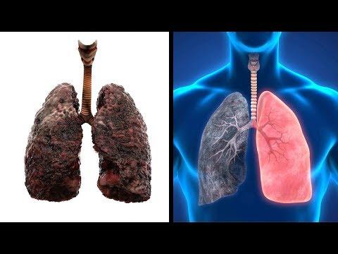 Das passiert mit deinem Körper, wenn du mit dem Rauchen aufhörst!