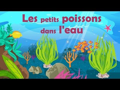 Les Petits Poissons Dans L'eau - Comptine Avec Gestes Pour Enfants Et Bébés (avec Les Paroles)