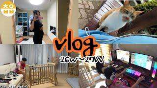 임산부vlog|26주~27주 배크기, 마파두부만들기, …