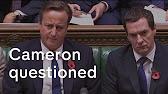 Stupidest Person In Britain