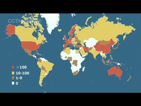 Les derniers chiffres sur l'épidémie de COVID-19