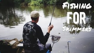 Feeder Fishing for Skimmers - RIVER OUSE (17 June 2018)