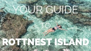 Download ROTTNEST ISLAND - How to Make the Most of your Day Trip from Perth Mp3 and Videos