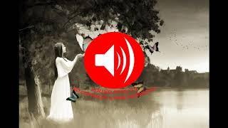 Free Music Downloader - Lifelong (Free Music Download No Copyright)