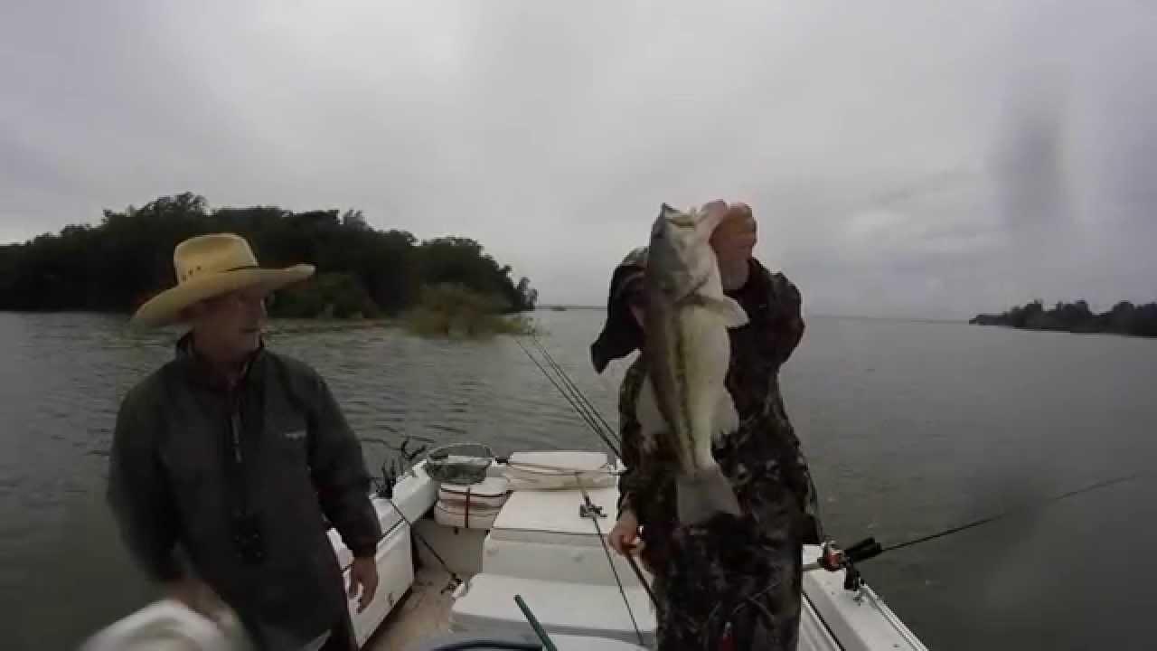 Striper fishing texoma 5 21 youtube for Texoma fishing license