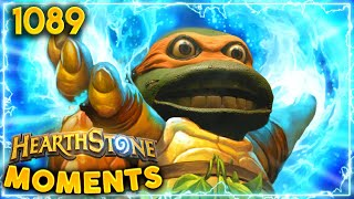 A HERO In A Half Shell, TURTLE POWER! | Hearthstone Daily Moments Ep.1089