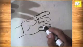 Cómo Dibujar Manos en distintas posiciones, Tutorial, Consejos y Tips de Dibujo