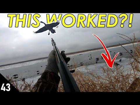 Hunting Ducks (MALLARDS) Out of TUMBLEWEEDS?! | 28 GAUGE Public Land Duck Hunting 2021
