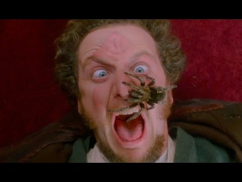 Movie REVIEW ✯Home Alone✯