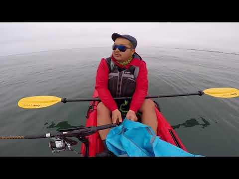 Moss Landing Ca Fishing Plus Whales