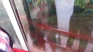 Парочка обезьян в минском зоопарке.(группа вконтакте: http://vk.com/pgshelp1 сайт: https://sites.google.com/site/na5balov заказать работу: ..., 2014-07-23T16:20:25.000Z)