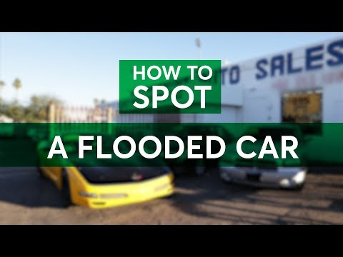Flooded Cars: How to Spot One Before You Buy | Consumer Reports