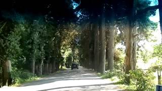 видео Город Пицунда