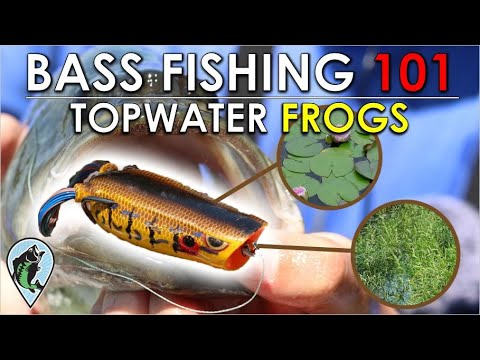 Beginner's Guide To Frog Fishing For Bass | Bass Fishing 101 Instruction (When, Where, Why, How)