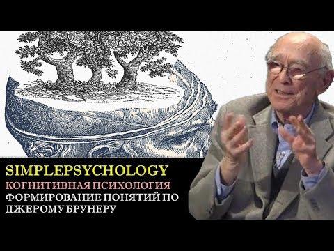 Когнитивная психология мышления #85. Теория перцептивных гипотез Джерома Брунера