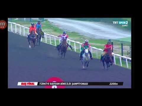 Rahvan At Yarışları Türkiye Şampiyonası 2019 Baş Final