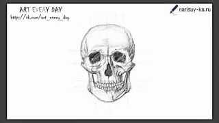 Как нарисовать череп(http://narisuy-ka.ru/kak-narisovat-cherep-karandashom/ Поэтапная прорисовка черепа тут!, 2012-11-10T17:45:15.000Z)