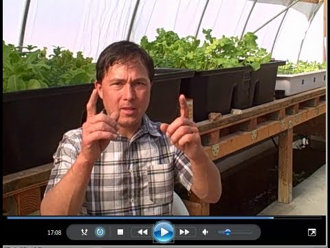 Aquaponics, Fruits and Vegetables Gardening in the Las Vegas Food Desert