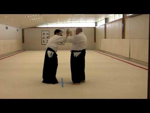 Merritt Steven's Aikido System - 2