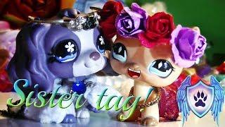 LPS: Sister tag!♥