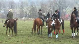 Konie Parkitny - Hubertus 2009