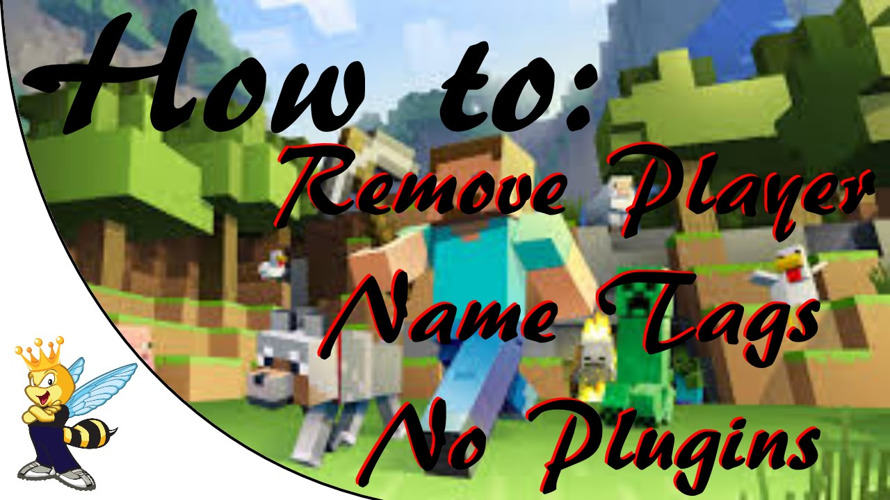 how to change your player name in minecraft
