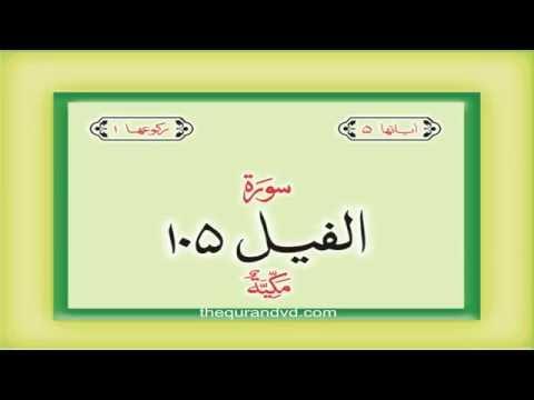 105. Surah  Al Fil  with audio Urdu Hindi translation Qari Syed Sadaqat Ali