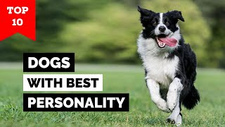 Top 10 Dogs With Best Personality