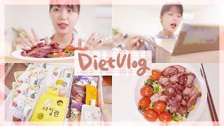 다이어트 브이로그 | 다이어트 식품 언박싱 | 단백질 …