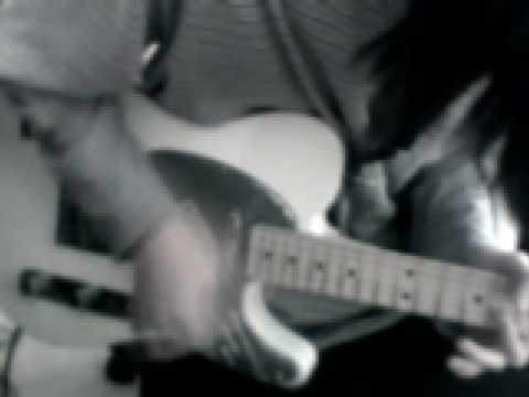 sonic youth - incinerate cover