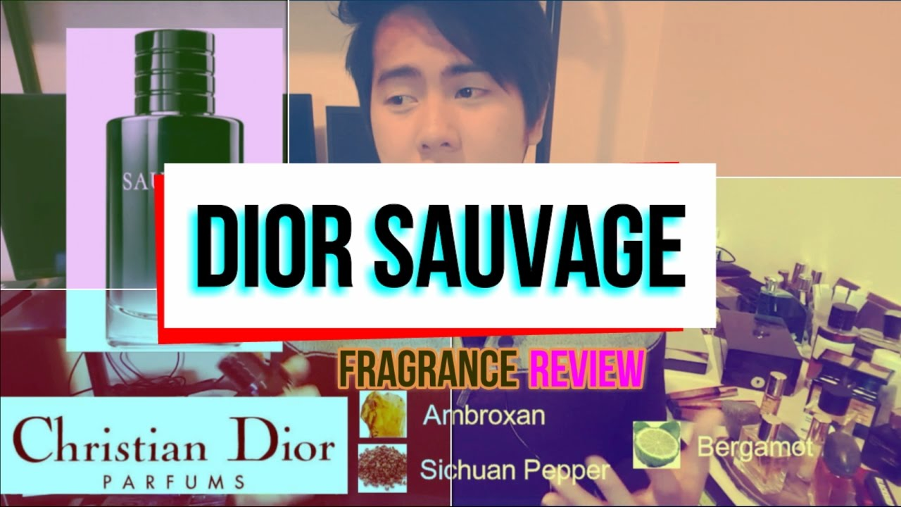 DIOR SAUVAGE Fragrance Review (Most complimented fragrances ...