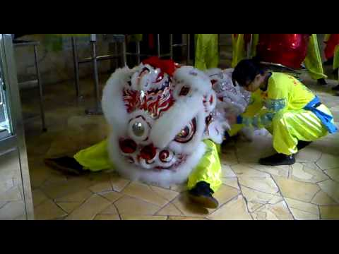 CNY Lion Dance Travel Video