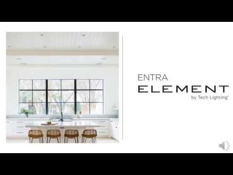 element entra led adjustable downlights