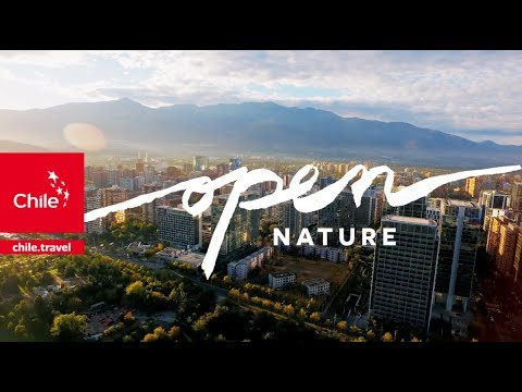 Chile Tourism Spot: Are you ready to open your senses? - Wine Tourism