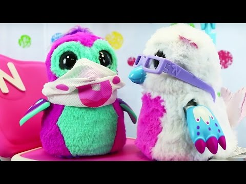 Hatchimals Baby Hospital Delivery Unhatching & Doctor's Check Up + Halloween Costumes New Hatchimal
