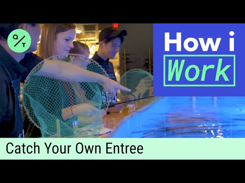 Fishing For Your Dinner | How I Work