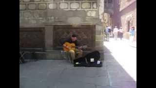 Che Guevara (Hasta Siempre) - Ciutat Vella Barcelona, España - Spanish Guitar