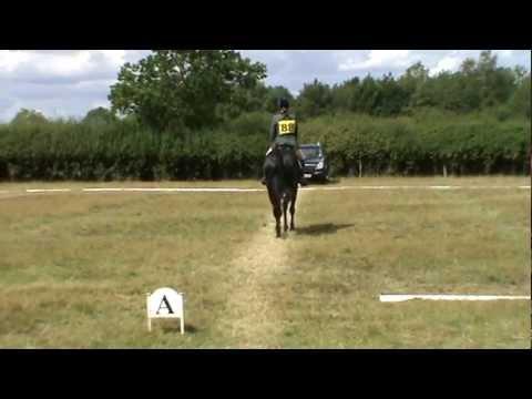 FHS - Whatapallaver - BE91 Dressage Test