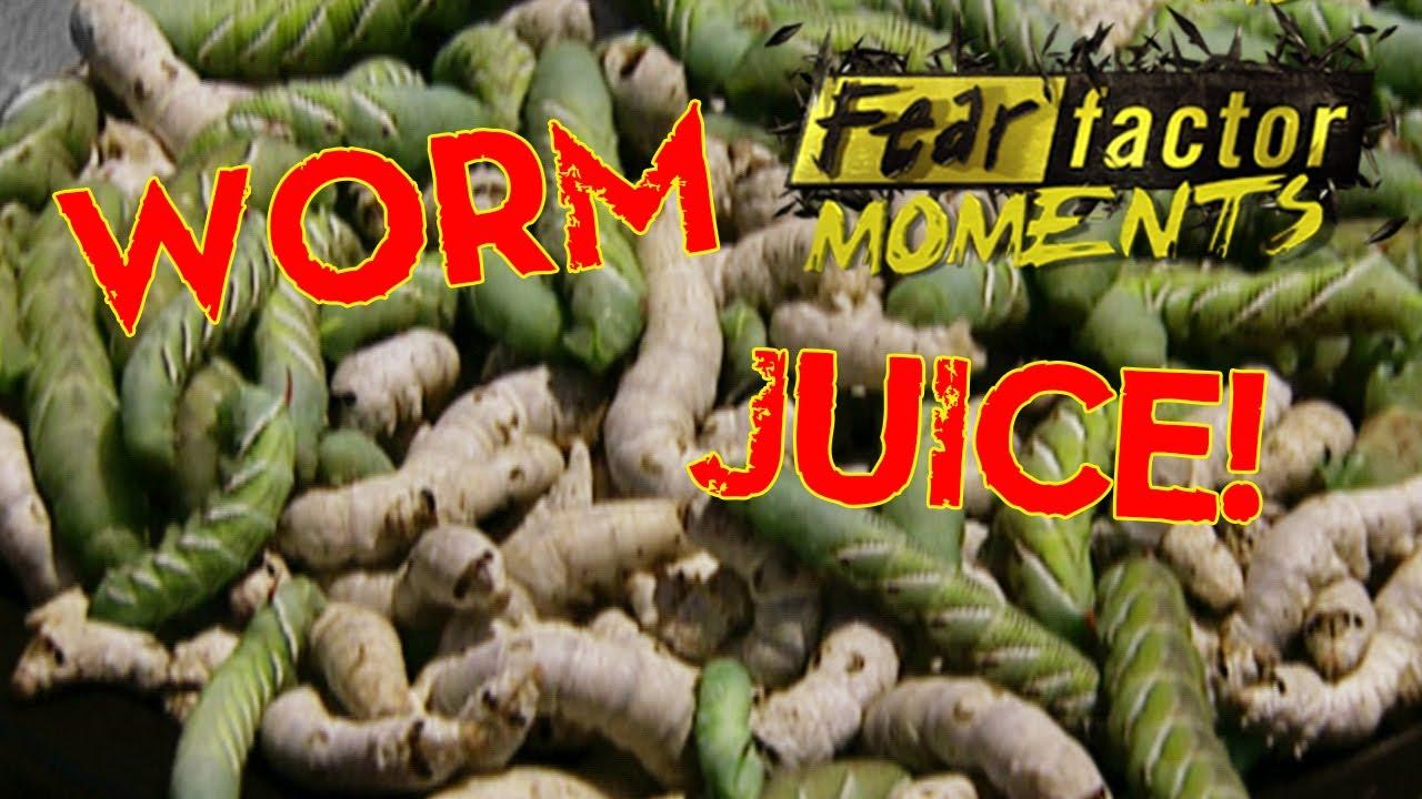 Fear Factor S04E09 Water Sack; Beetle Roach & Worm ...  Fear Factor Worms