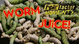 Fear Factor Moments | Tomato Worm Juice