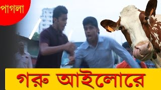পাগলা গরু আইলোরে  | Bangla New Funny Video  | Bangla Prank EP 12   | Mojar Tv