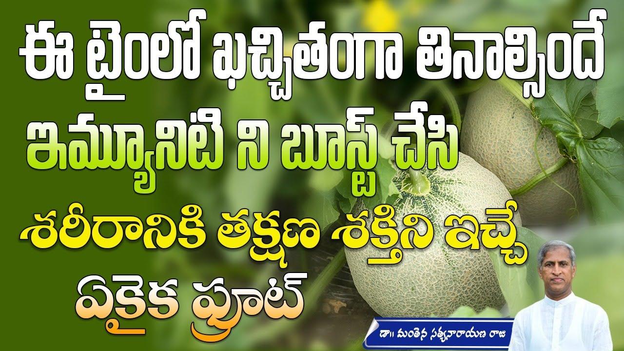 Immunity Booster Drink   Weight Management   Benefits of Kharbhuja   Manthena Satyanarayana Raju