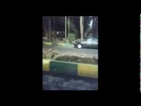 An hour in Tehran Cemetery on Camera
