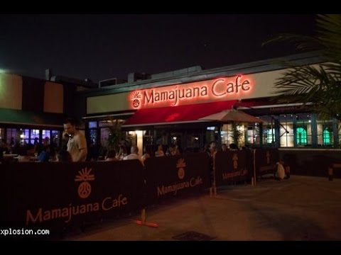 Mamajuana Cafe: Sunday Brunch