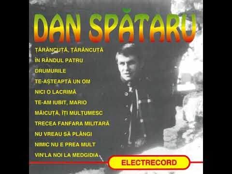Dan Spătaru - Best of... - Album Integral