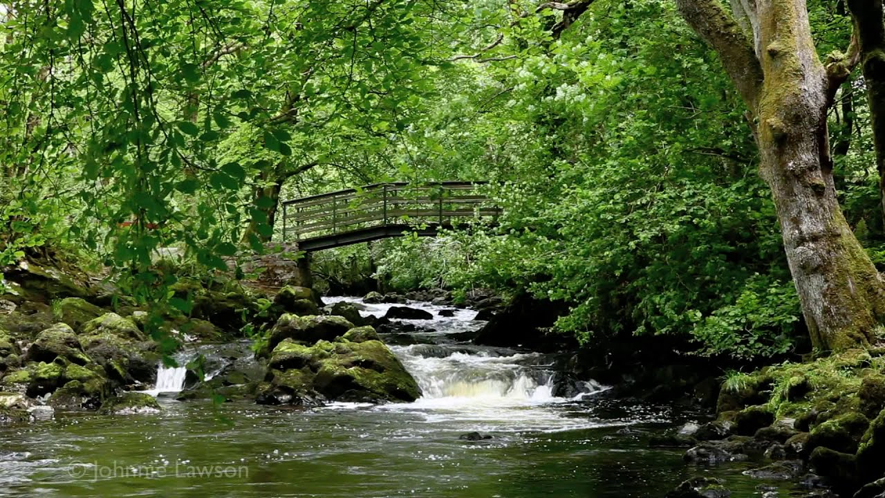 3d Live Waterfall Wallpaper For Desktop 3d Landscape Relaxation Meditation Nature Sounds Flowing