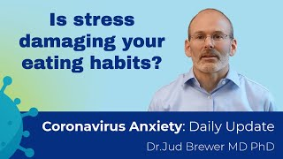 Are you overeating, or so stressed that you forget to eat? (how to fix it) (Daily Update 16)