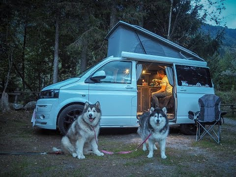 VW T5 camper van touring with malamutes