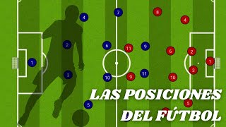 The positions in soccer | Characteristics, functions and roles of soccer players.